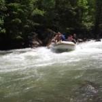 Krivaja rafting