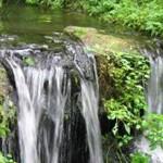 Muška voda