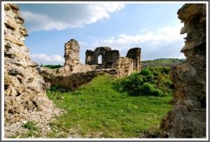 Stari grad Bužim