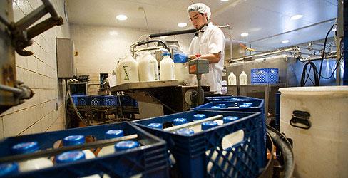 mlijeko, proizvodnja