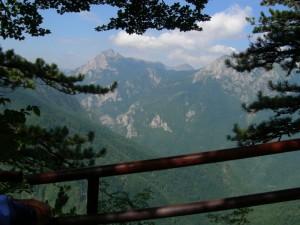 Prašuma Peručica, Sutjeska