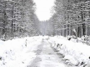 snijeg, putevi