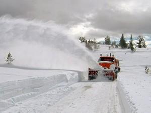 Foča,  snijeg