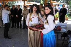 Mostar, Dani trešnje