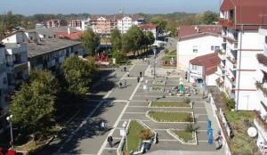 Srbac