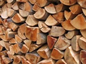 drva avaz i Vahida
