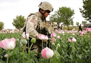 Afganistan, heroin