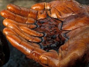sirova nafta