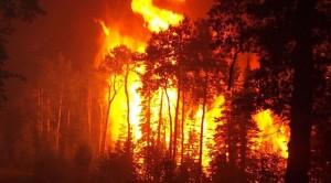 požar, Hercegovina
