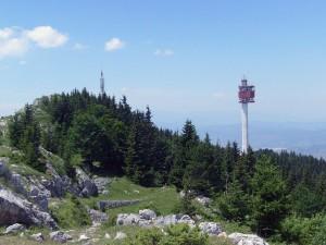 šuma, drvo, turizam, ekologija, Sarajevo, Trebević