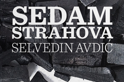 Selvedin Avdić, Sedam strahova