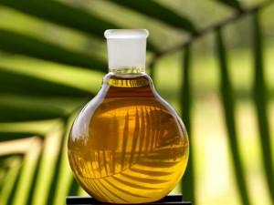 Palmino ulje