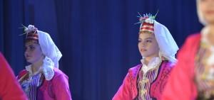 Festival kulture Bosne i Hercegovine