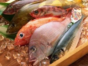 riba, hrana