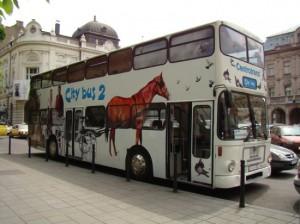 Sarajevo City bus