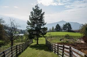 Zemljište koje je bračni par Izetbegović kupio sa Ševkijom Okerićem udaljeno je nekoliko stotina metara od njihove kuće na Poljinama. (Foto: CIN)