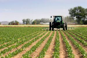 hrana, poljoprivreda
