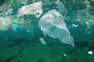 zagađenje, more, okean