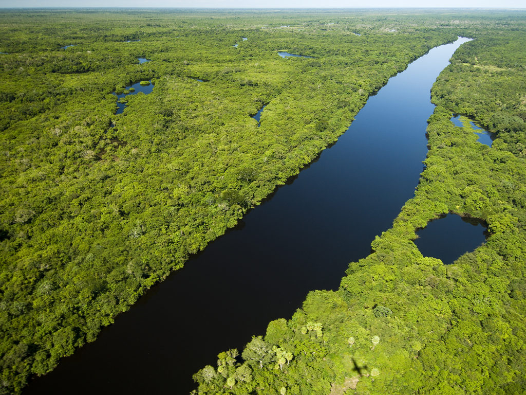 Brazil, Amazon