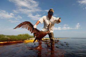 Meksički zaljev, nafta
