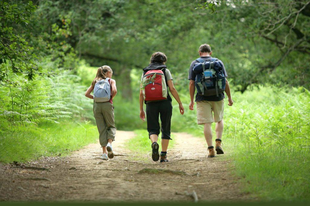šuma, izlet, planinarenje