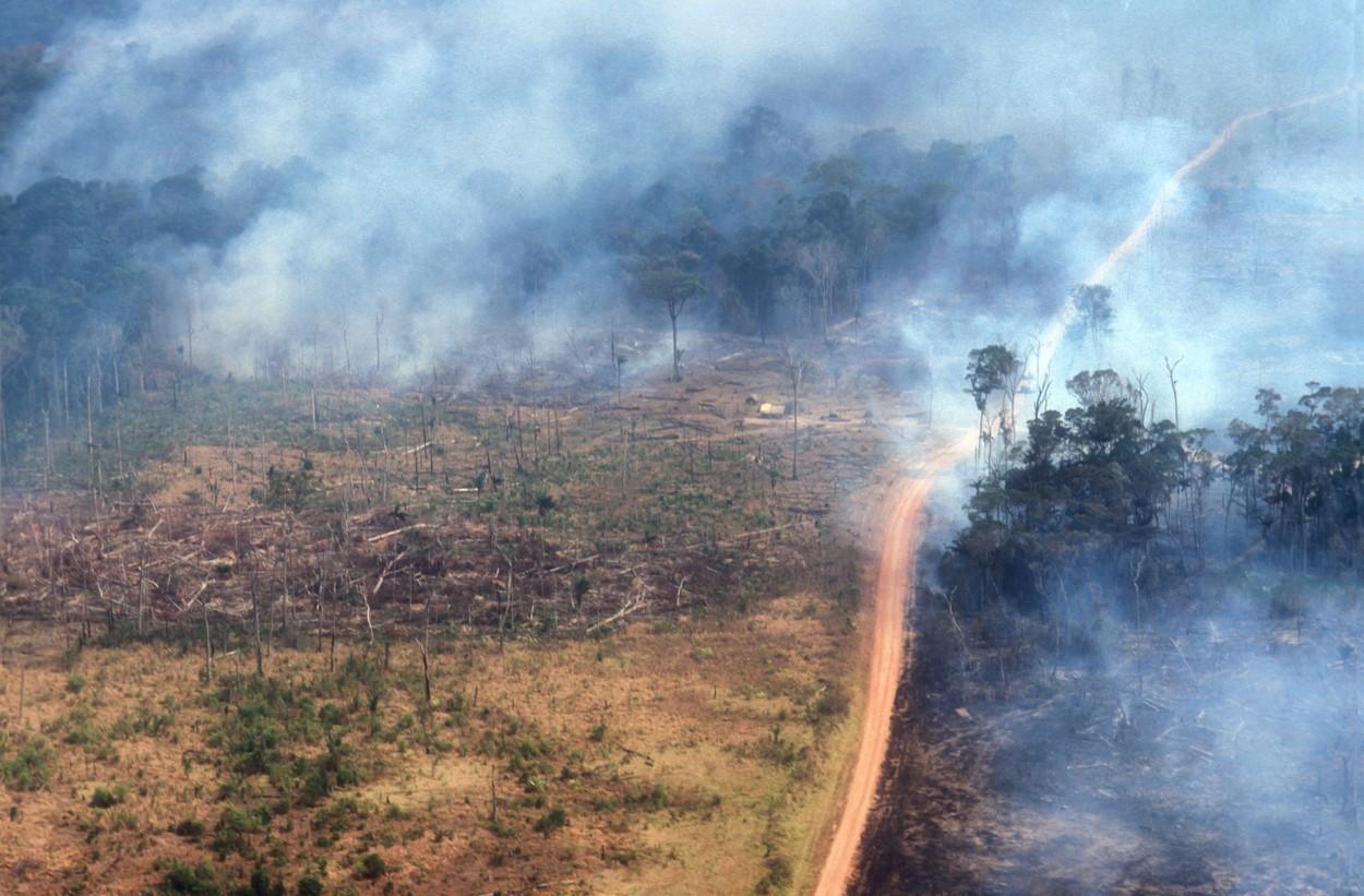 Amazonija, požar